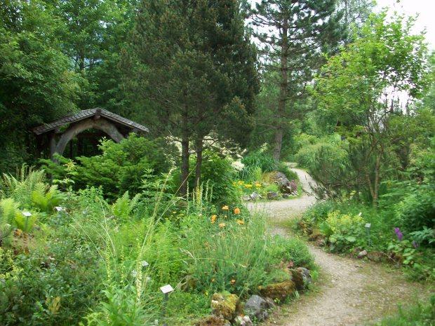 7 Im Alpengarten