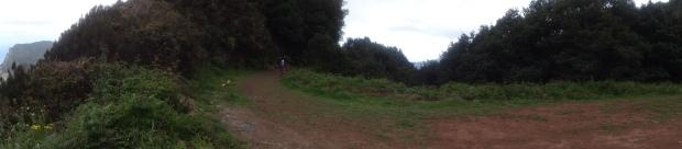 Madeirensischer Forstweg