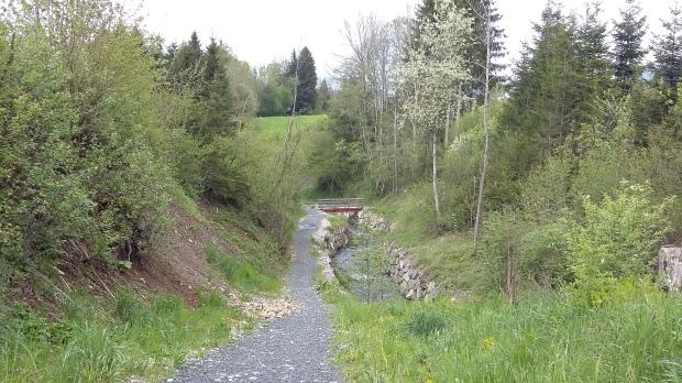 Der Schwarzenbach